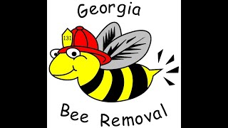 honey bee rescue Auburn GA